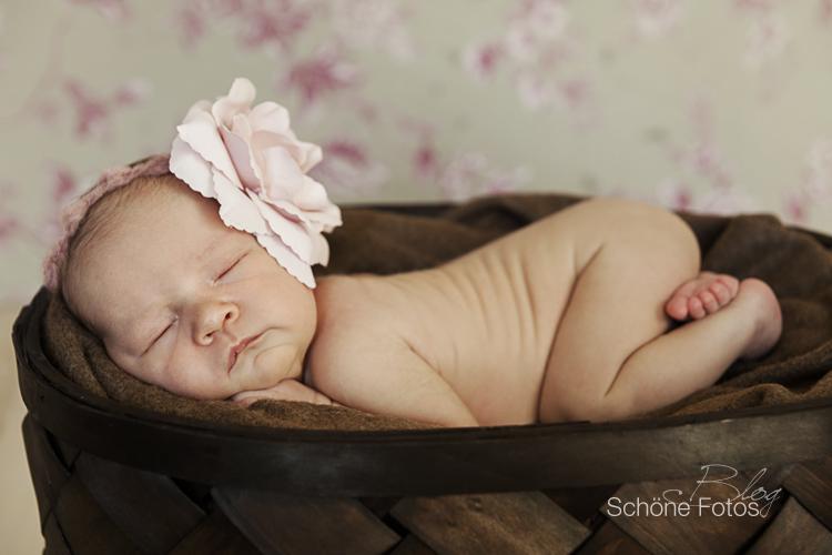 Babyfotografie, Neugeborenenfotos, Schwangerschaftsfotos