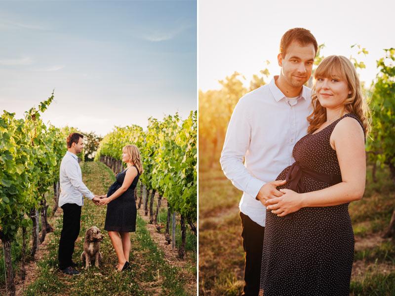 Babybauchfoto Fotoshooting Schwangerschaft Outdoor Weinberge Radebeul
