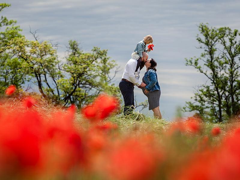 Foto Schwangerschaft Familienfoto Mohnfeld Meißen
